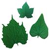 Leaf Impression texture mat for Pottery / 1set